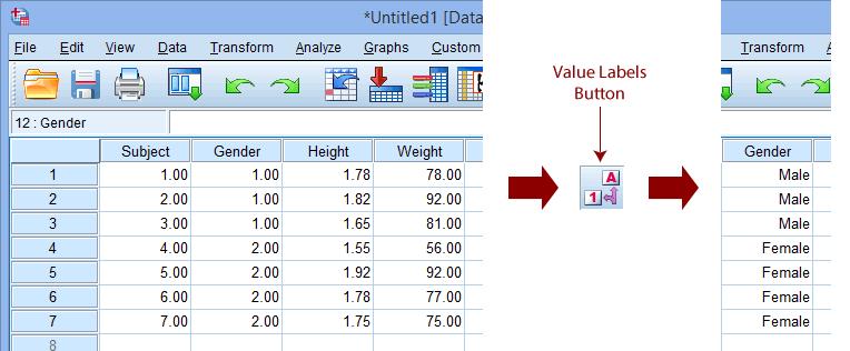 Entering Data in SPSS Statistics | Laerd Statistics